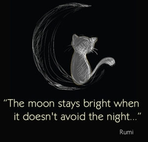 the-moon-stays-bright-rumi-picture-quote